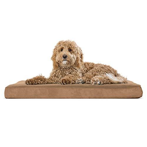 Bed Camel - 8