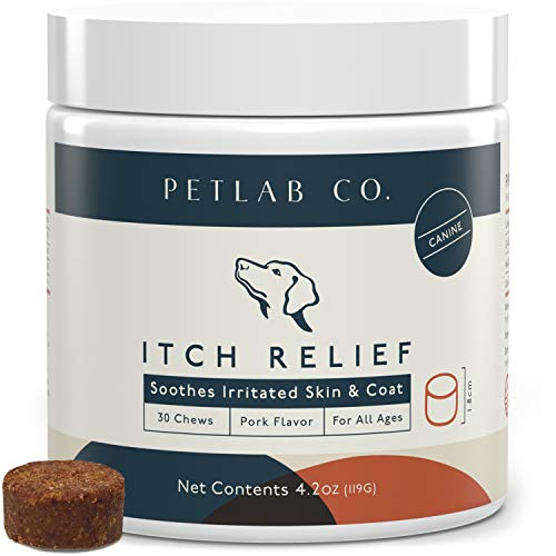 Petlab Co. Itch Chews For Dogs | Comfortable Skin & Coat Supplements | Formulated To Keep Dogs Itch Free | Maintains A Healthy Skin Condition | Turmeric Curcumin, Omega 3 & Omega 6, Salmon Oil, Honey