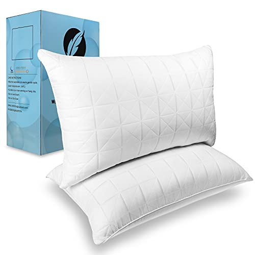 NEIPOTA Bed Pillows for Sleeping Queen Size Set of...