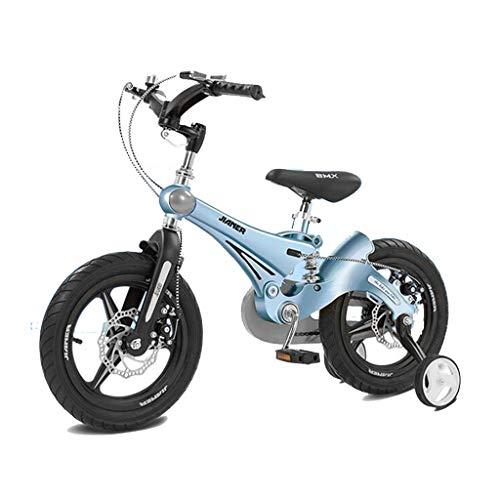 TD Kinderfahrrad 3-6 Jahre Alt Baby Fahrrad 12 Zoll Kinderwagen Junge Mädchen Aussetzung Fahrrad V0056 (Color : Holy Lake Blue)