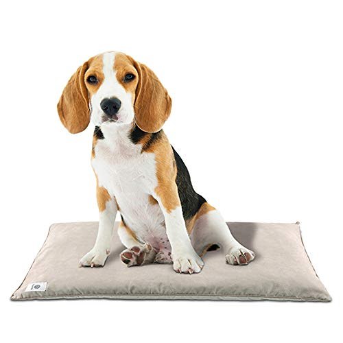 BreathTec Pet Car Seat Covers Training Pad Cat Litter Mat $8.70 (71% Off with code)