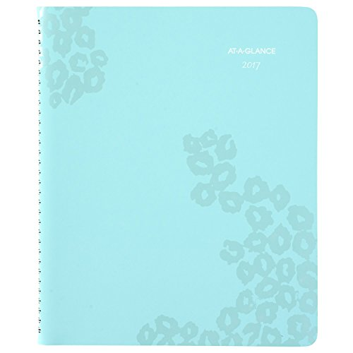 """AT-A-GLANCE Weekly / Monthly Planner / Appointment Book 2017, 8-1/2 x 11"""", Professional, Wild Washes (523-905)"""
