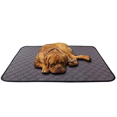 MeijieM 2 Pezzi Tappetini Assorbenti per Cani e Gatti - Tappetini Impermeabile Lavabile Riutilizzabile Tappetini Igienico per Animali Domestici al Interno e Viaggi in Auto (100x67cm)