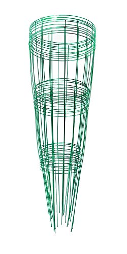 Glamos 220500, Blazing Gemz Plant Support, 12 by 33-Inch, Emerald Green (Pack Of 10 Supports)