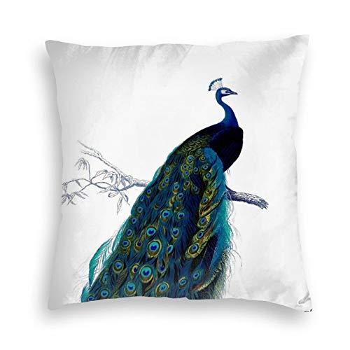 Funda de almohada, estilo vintage, azul, elegante, colorido pavo real, decorativo, cuadrado, funda de cojín de 45,7 x 45,7 cm, para sofá, dormitorio, sala de estar, decoración