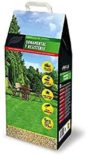 Semillas de Césped - Césped Ornamental y Resistente 5kg - Batlle