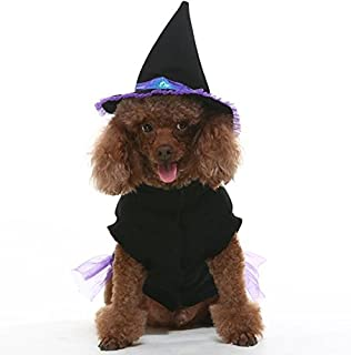 EXPAWLORER Dog Halloween Costume, Comfortable Fancy Witch Costume for Party Activity