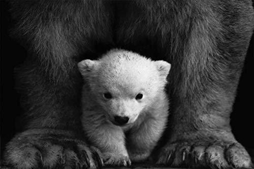 N / A Schwarz-Weiß-Retro-Fotografie Wandkunst Leinwanddrucke Nordische Bärenplakate und rahmenlose dekorative Gemälde für Kinderzimmerwände A4 60x80cm
