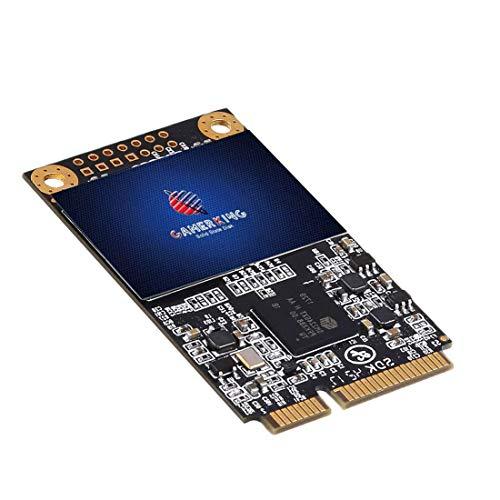 Gamerking SSD mSATA 64GB internes Integrierte Solid State Festplatte Hochleistungs Festplatte Für Desktop-Laptop Einschließlich SSD (64GB, Msata)