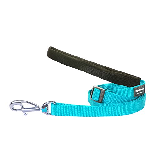 Red Dingo Pet Leash, Classic Turquoise, 15mm