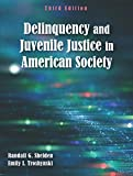 Delinquency and Juvenile Justice in American Society, Third Edition