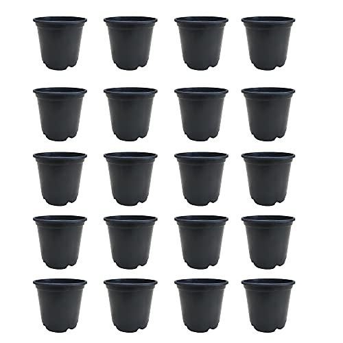 Nursery Planter Pots 6 inches Set of 20 pots for Indoor and Outdoor Gardening