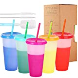 Color Changing Cups - 5 pack 24oz Reusable Tumbler with Lids and Straws BPA Free Magic Colored Tumbler with Straw Cleaner and Sponge Cleaning Brush