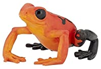 Papo 'Equatorial Red Frog' Figure [並行輸入品]