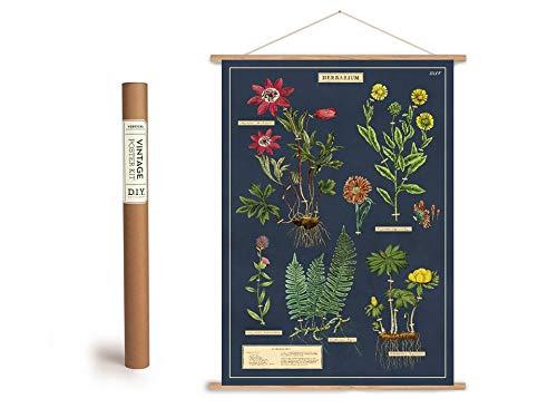 Cavallini Vintage Poster Set mit Holzleisten (Rahmen) und Schnur zum Aufhängen, Motiv Herbarium, Kräuter