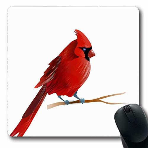 Luancrop Mauspads für Computer Natur Roter Vogel Kardinal Wildlife Animation Helles Cardinalis Allgemein Design Ökologie rutschfeste, längliche Gaming-Mausunterlage