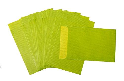25 Stück kleine Papiertüte hellgrün grün apfelgrün 9,5 x 14 cm + 2 cm Lasche Verpackung Papierbeutel Kraftpapier-Tüte Geschenktüte Umschlag limone-quitte Kinder-Tüte
