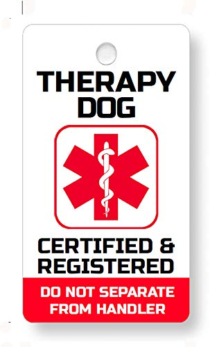 Just 4 Paws Therapy Dog Key & Collar Tag for Your Therapy Dog (Therapy Dog TD21)