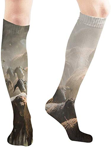 Preisvergleich Produktbild ouyjian Dark Shadows Large Herd Sheep Walk Animals Wildlife Nature Casual Socks Athletic Socks for Women and Mens Sports,  Travel