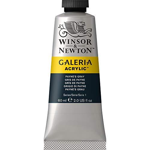 Winsor & Newton 2120465 Galeria Acrylfarbe, hohe Pigmentierung, lichtecht, buttrige Konsistenz, 60 ml Tube - Payne´s Grau