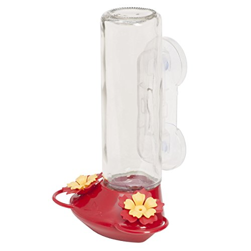 Perky-Pet 355255 445-2 Glass Window Hummingbird Feeder, Red – 14 oz