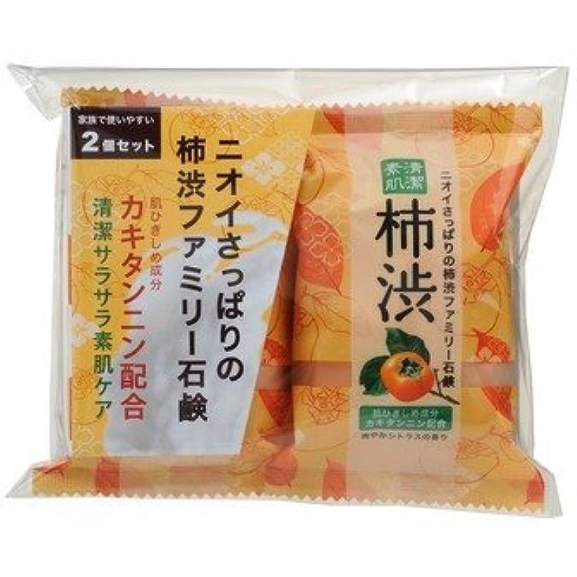 前部信頼性のあるカフェファミリー柿渋石鹸 2P × 10個セット