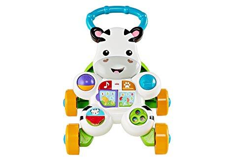 Fisher First Steps Pushable - Juguete electrónico Educativo con música y Sonidos, Apto para niños a Partir de 6 Meses, Cebra, Multicolor