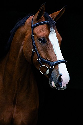 Horseware Rambo Micklem Deluxe Competition Eng Lthr. - Black, Groesse:Vollblut (M)