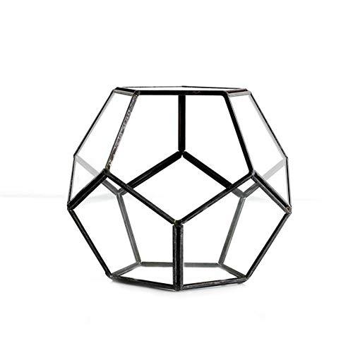 Geometrisches Glas Terrarium Box Schmuckschatulle Glas Sukkulente Pflanzgefäß Deko Kleine Glas Blume Zimmer Ewige Blume Geschenkbox Hochzeitsdekoration Micro Landschaft Glasabdeckung.