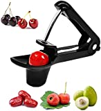Cherry and Olive Pitter Tool, Portable Olive and Cherry Pitter Remover, Multi-Function Fruit Corer and Pitter Remover, Portable Cherry Pitter kitchen aid with Space-Saving Lock Design