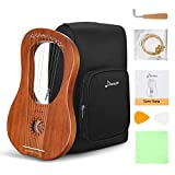 Donner DLH-002 Lyre Harp, 10 Metal Strings Bone Saddle Mahogany Lyre Harp with Tunning Wrench, Extract Strings, Manual and Gig Bag