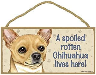 SJT ENTERPRISES, INC. A Spoiled Rotten Chihuahua (Tan) Lives here Wood Sign Plaque 5