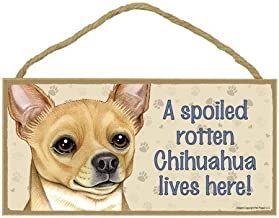 Best a spoiled rotten chihuahua lives here Reviews