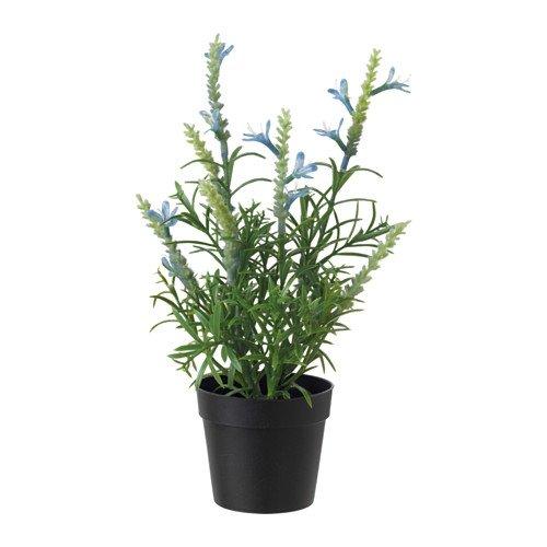 IKEA FEJKA Künstliche Topfpflanzen, Lavendel blau Kunstpflanze