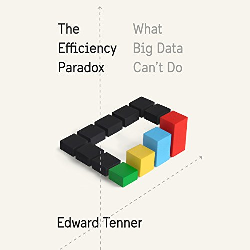 The Efficiency Paradox Titelbild