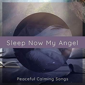 Sleep Now My Angel: Peaceful Calming Songs for a Restful Sleep