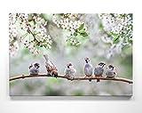 Bezaubernde Kirschblüte mit Spatzen-Kinder - als großes