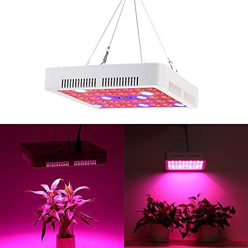 UISEBRT 300W Pflanzenlampe Pflanzenleuchte LED Vollspektrum - Grow Lampe Wachstumslampe 100 LEDs Rot&Blau für Zimmerpflanzen Blumen und Gemüse tageslicht (300W)