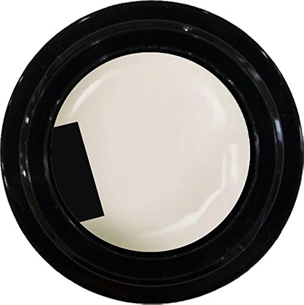 教師の日救援資本主義カラージェル enchant color gel M005 RetroWhite 3g/ マットカラージェル M005 レトロホワイト 3グラム