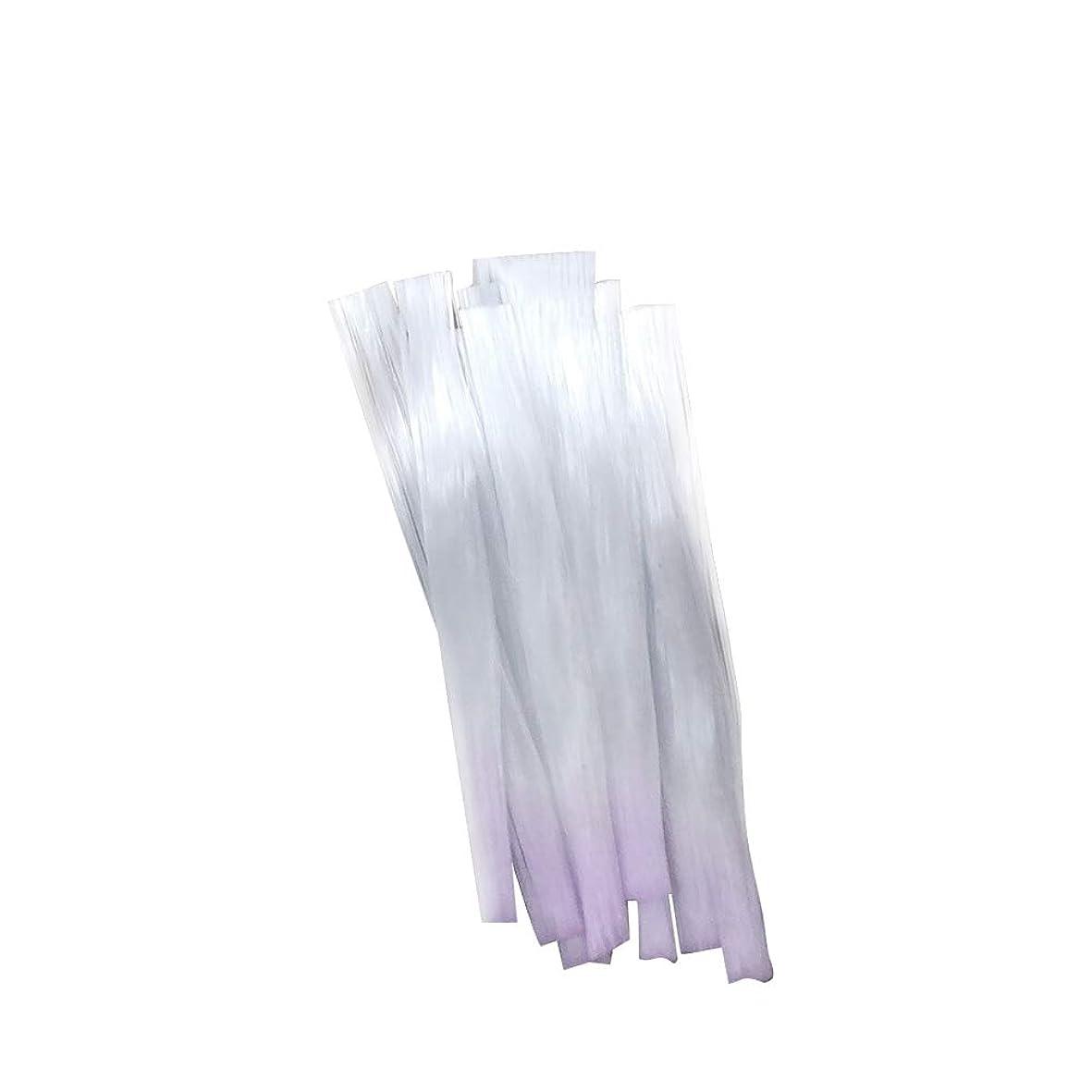 学校の先生検出可能細菌Decdeal ネイルエクステンション ネイルアート グラスファイバー マニキュアサロンツール (10 *ネイルグラスファイバー)