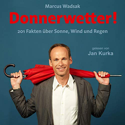 Donnerwetter audiobook cover art