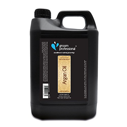 Groom Professional Argan Oil Soothing Dog Shampoo - Repairs Dry Skin, 4 Litre
