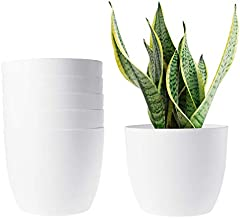 T4U 6 Inch Self Watering Planters Plastic Plant Pot, Modern Decorative Flower Pot/Window Box for All House Plants, Flowers, Herbs, African Violets, Succulents - White, Set of 6