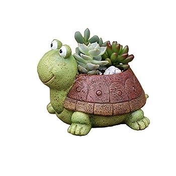 Best turtle planter Reviews