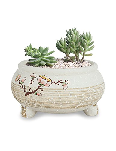 Dahlia Plum Blossom Hand Painted Ceramic Succulent Planter/Plant Pot/Flower Pot/Bonsai Pot, 2