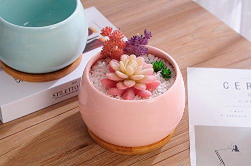 Jusalpha Ceramic Large Succulent Cactus Plant Pot with Bamboo Tray, Planter07 (Pink)