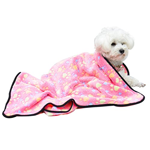 EXPAWLORER Pet Blanket for Small Cats & Dogs Thick S 7652cm Pink