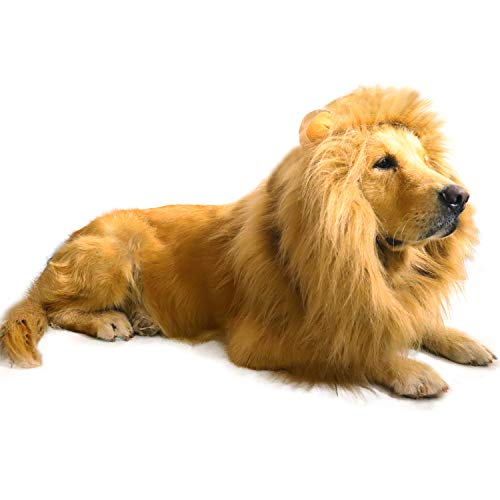 AQCSS Dog Lion Mane Costume,Lion Mane Wig Costumes for Medium to Large Sized Dog with Ears & Tail Halloween Lion Costumes