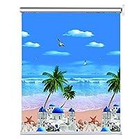 LJFPB ロールスクリーン ロールカーテン 印刷されたカスタムウィンドウブラインド、 60-140cm 装飾 窓、ドア、家、キッチン、リビングルーム用 (Size : 80x260cm)