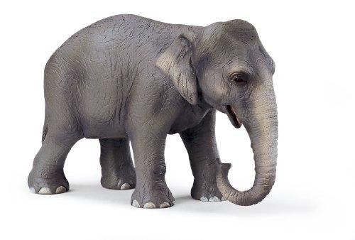SCHLEICH 14344 - Wild Life, Asiatische Elefantenkuh